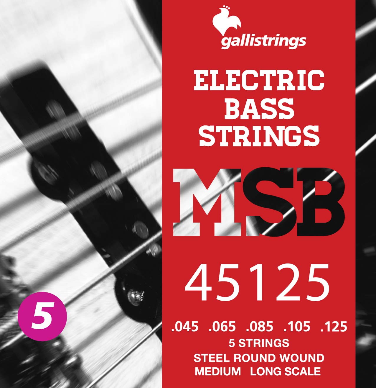 MSB45125 5 strings Medium