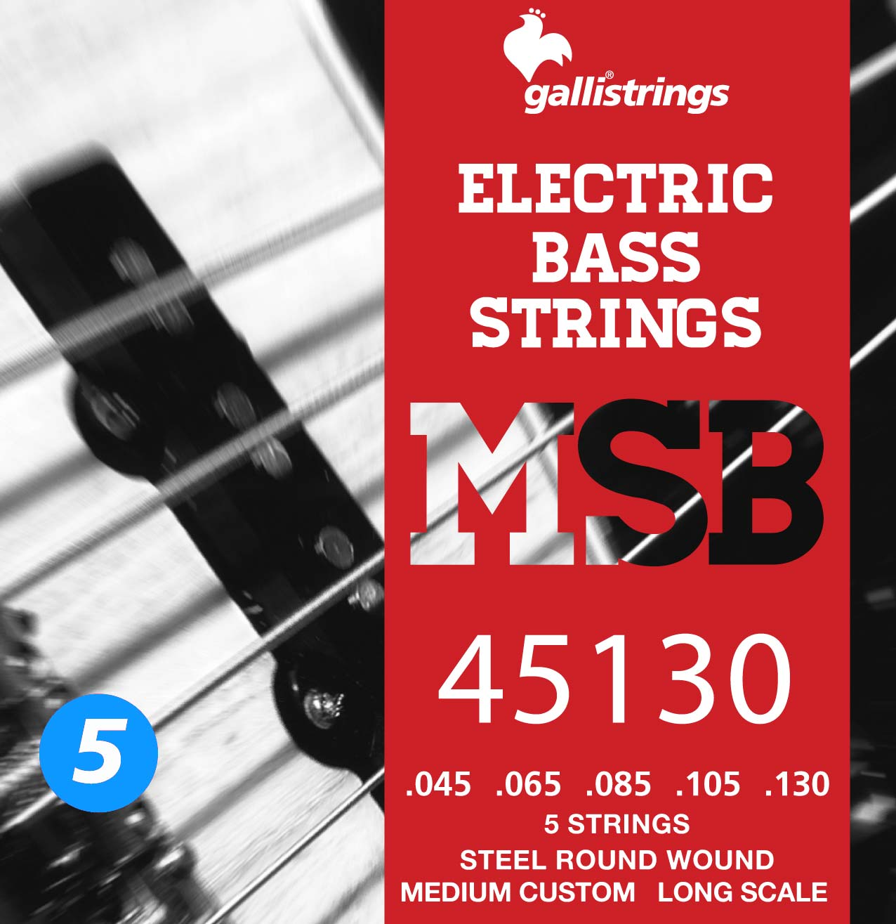 MSB45130 5 strings Medium Custom